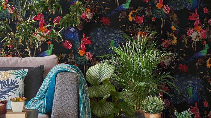 Vliestapete mit tropischem Motiv, Pfauen und Paradiesvögel, Sessel, Grünpflanzen