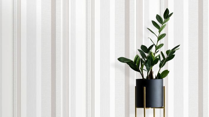 Vliestapete mit Streifen in hellem Greige, moderner schwarzer Blumentopt mit Pflanze