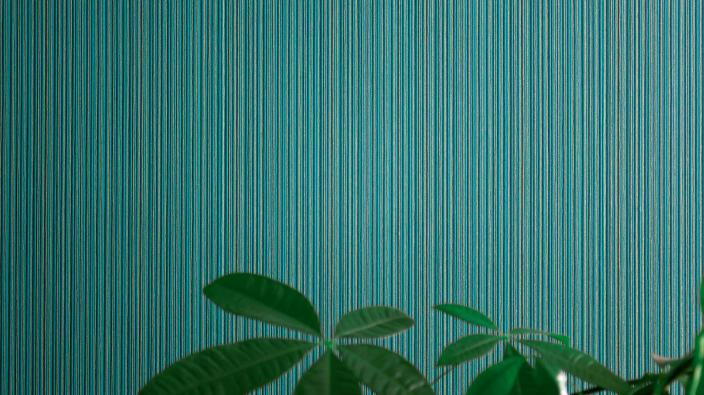 Wall design with non-woven wallpaper, plain structure in dark green with vertical fine stripes, green plan