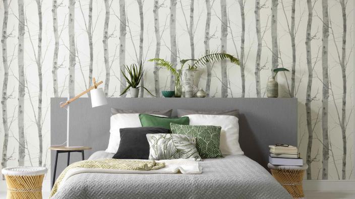 Wandgestaltung mit Vliestapete, Motiv Birkenstämme in Silbergrau, Schlafzimmer mit modernem Bett in hellgrau, viele Kissen, Pflanzen