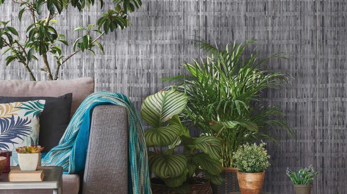 Modernes Wohnzimmer mit Vliestapete im Bast-Look, Silbergrau, Grünpflanzen, graues Sofa
