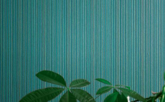 Wandgestaltung mit Vliestapete, Unistruktur in dunklem Grün mit vertikalen feinen Streifen, Grünpflanze